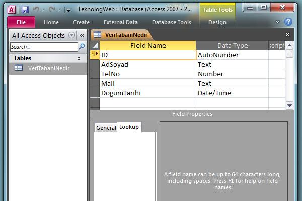 Veri Tabanı Nedir? Access ile Örnek Veri Tabanı