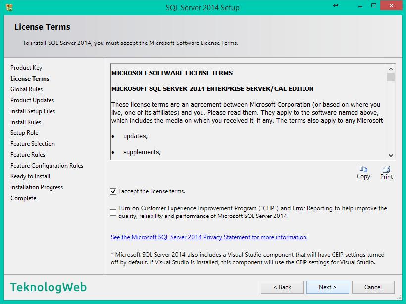 SQL Server 2014 Kurulumu Nasıl Yapılır - License Terms