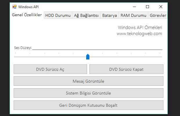 Windows Api Kullanımı - Örnek Proje