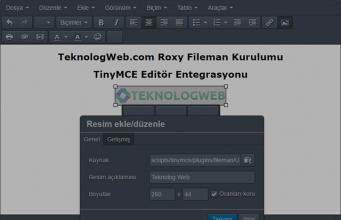 Asp.net Roxy Fileman Kurulumu (TinyMCE Entegrasyonu ile Birlikte)