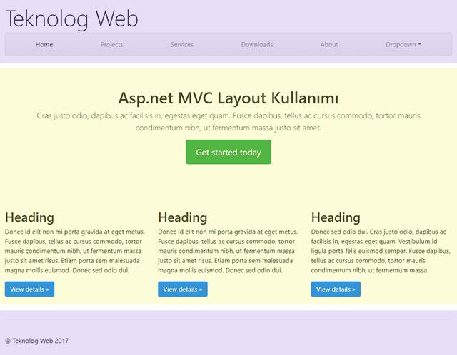 Asp.net MVC Layout Kullanımı Örneği